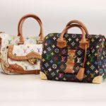 Louis Vuitton Multicolor Monogram Speedy 30 & Rita